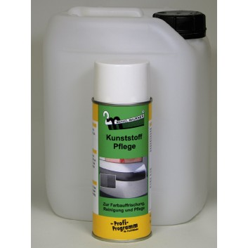 Kunststoffpflege-Spray In 10 l/Ka