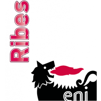 Eni Ribes SX 320 im 5 L/Kanister
