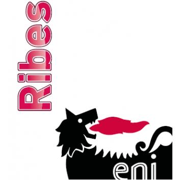 Eni Ribes 320 im 215 L/Fass