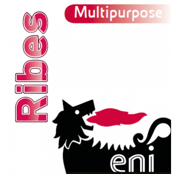 Eni Ribes MULTIPURPOSE  12x400 ml/Spray